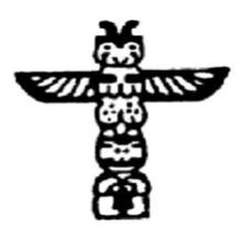 Chiro Totem